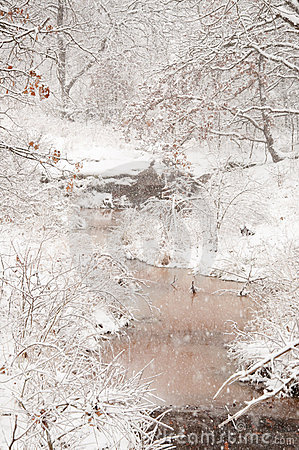 Zware sneeuwval over een kreek