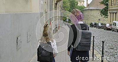 Zwei Mädchen Schwestern gehen zur Schule mit Rucksäcken, Rückseite stock video