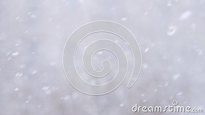 Zwolnionego tempa tło śnieżny spadku dmuchania post w zima dniu zbiory wideo