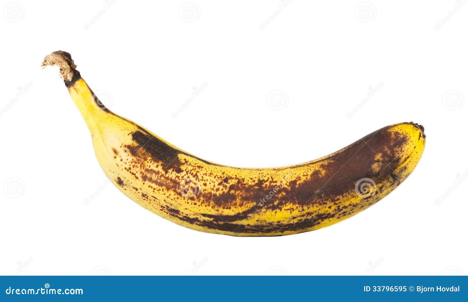 banana business plan