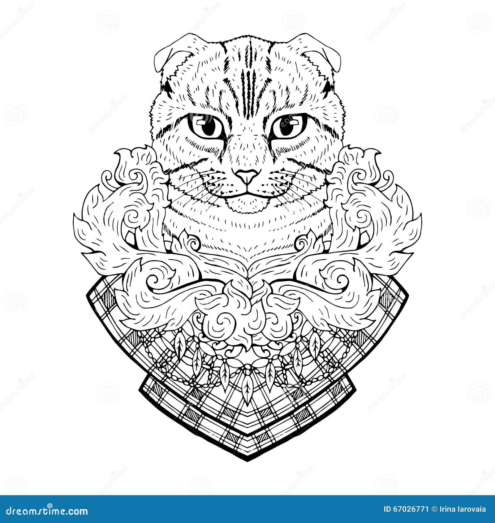 黑白动物猫头,抽象派,纹身花刺,乱画剪影 球猫折叠苏格兰人 宠物概述图片
