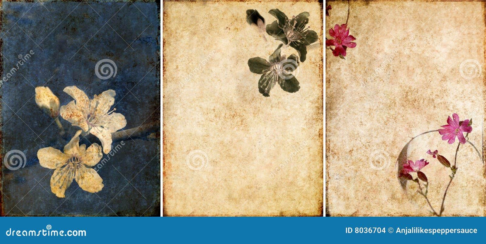 背景可爱的纹理三 库存图片