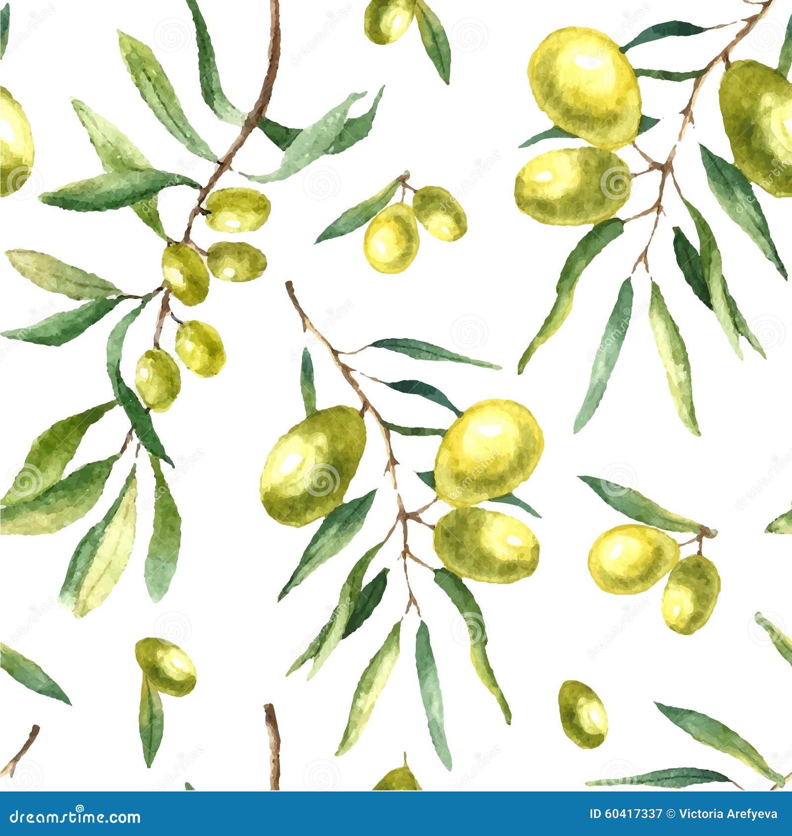 的花卉纹理:绿橄榄图片