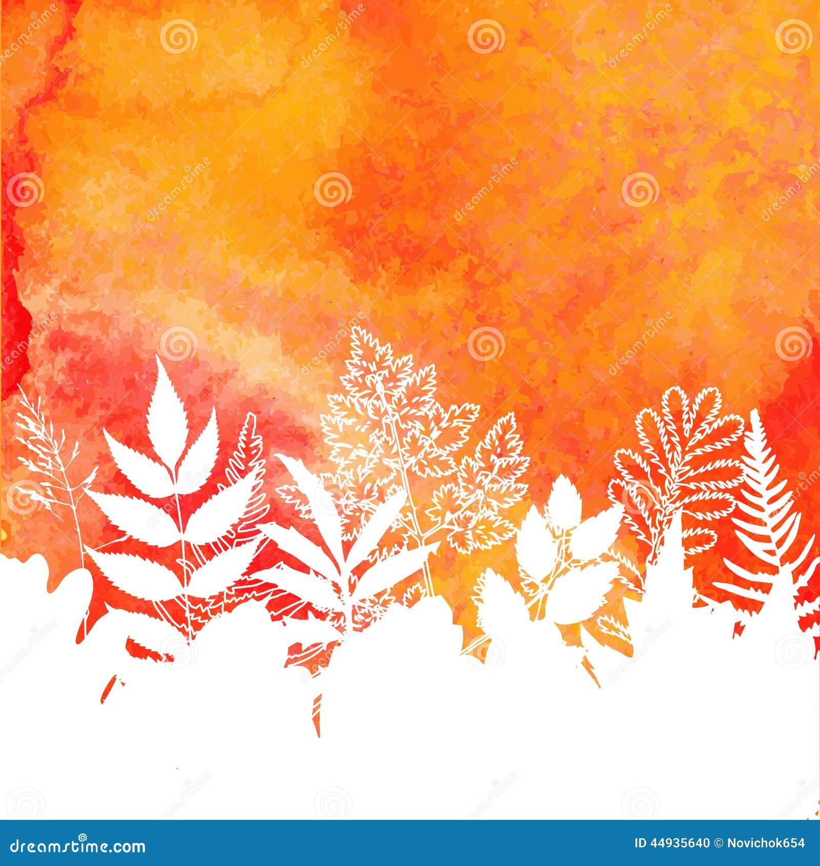 橙色水彩被绘的秋天叶子背景.图片