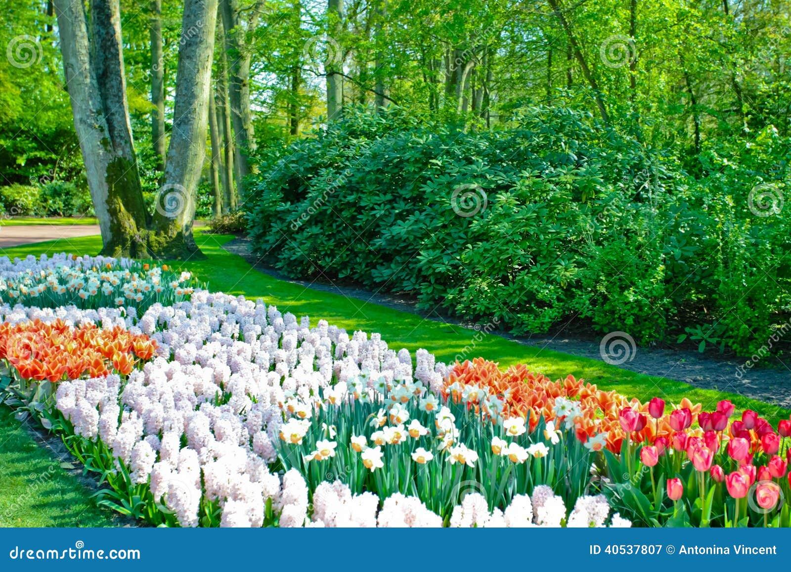 春天庭院风景 库存照片