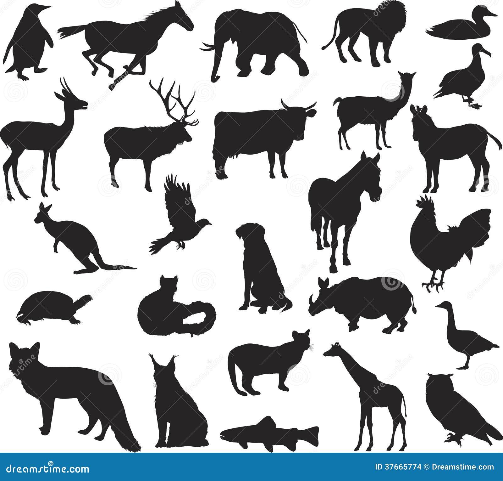 动物剪影 库存图片 - 图片