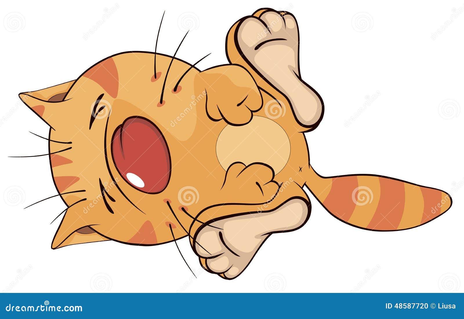 动画片猫 向量例证 - 图片图片