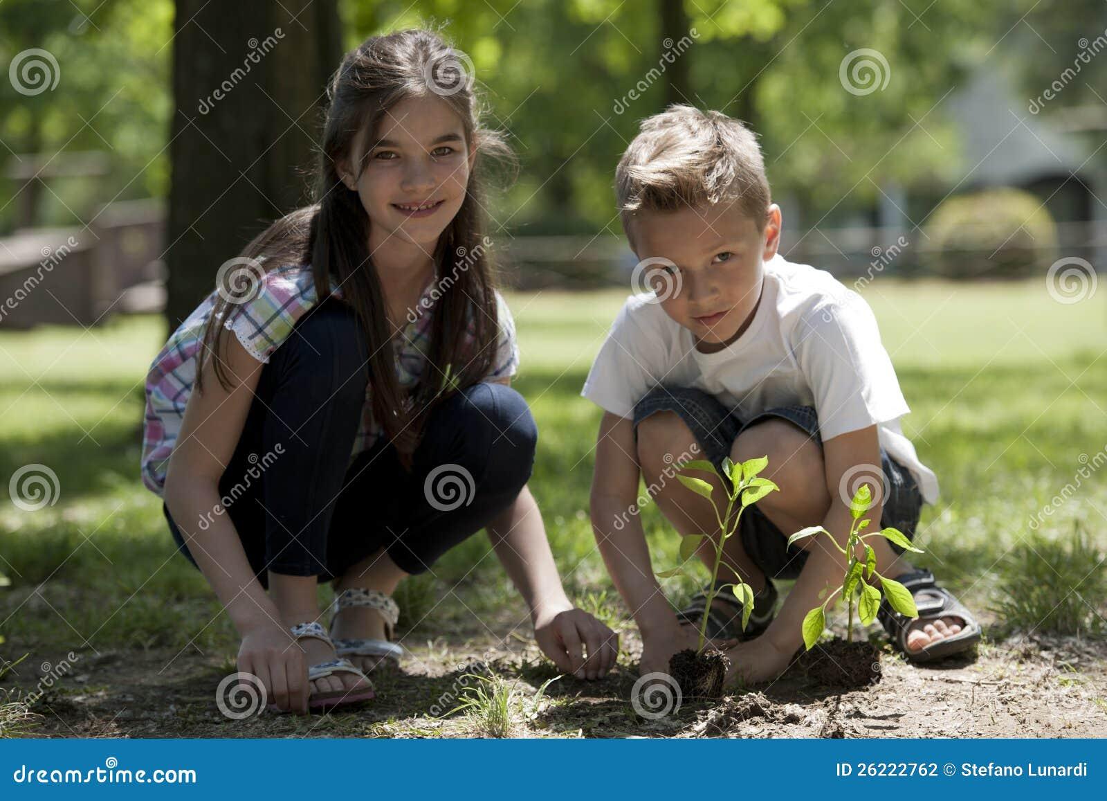 儿童种植 图库摄影 - 图片