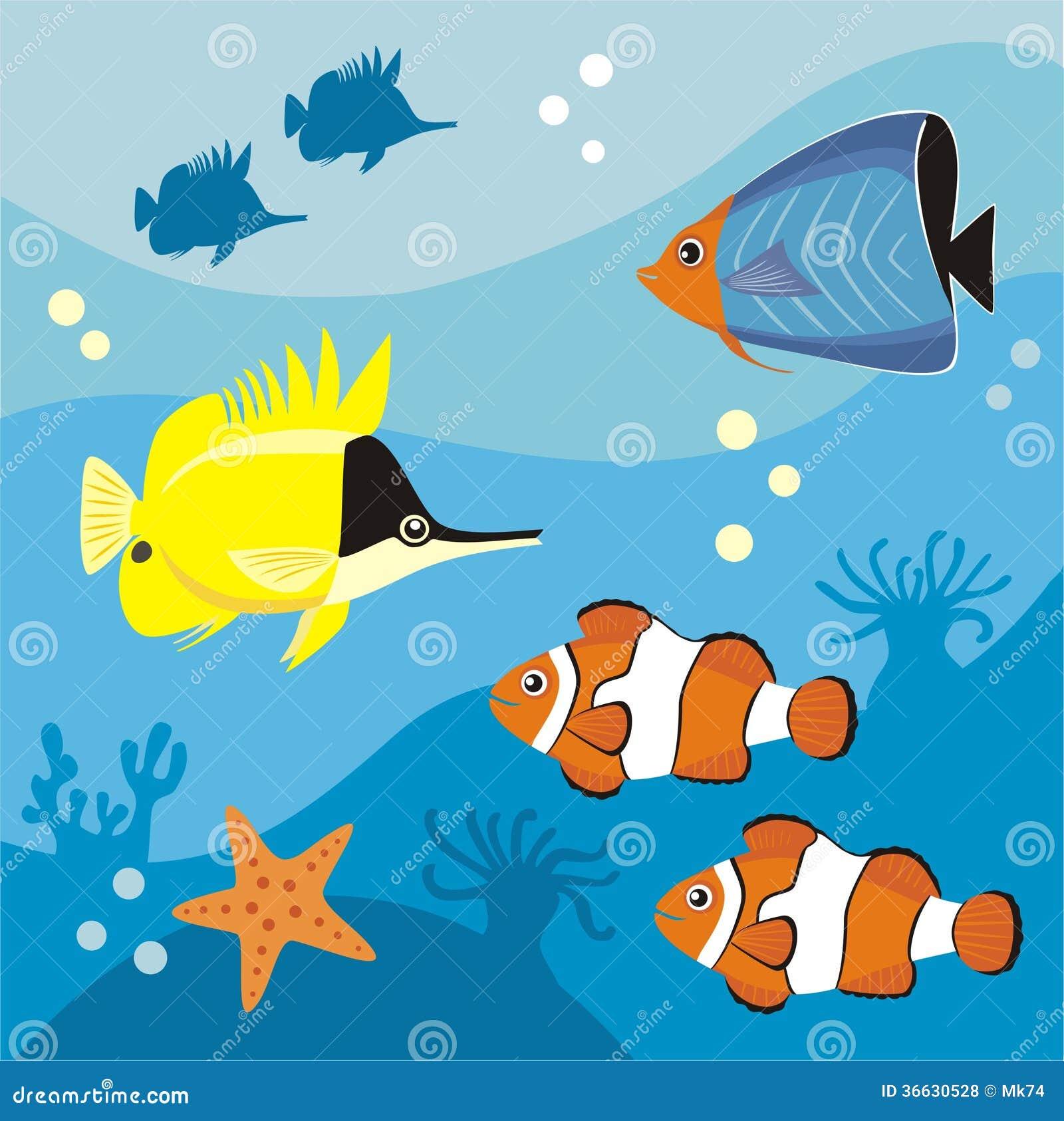 海洋生物 免版税库存照片