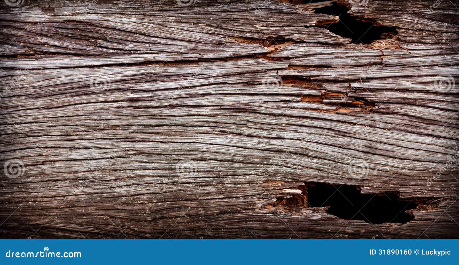 老木头纹理 库存照片