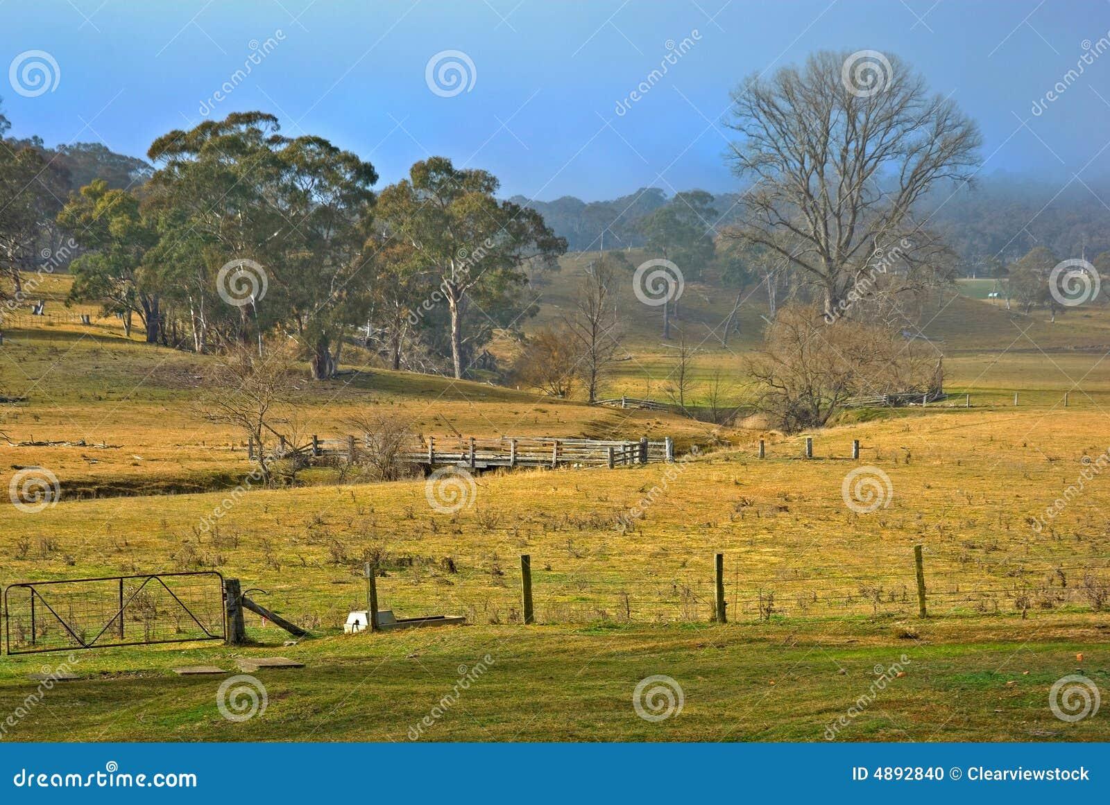 国营红泉农场风景
