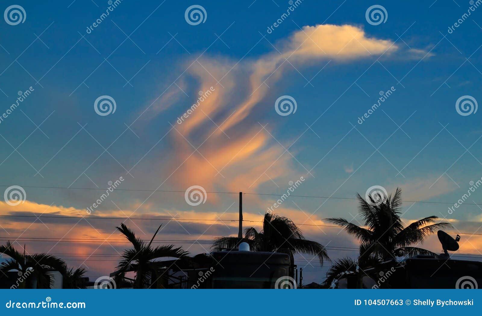 ¿La forma divertida de la forma de las nubes le gusta un pato? en cielo de la puesta del sol sobre parque de rv en llave del mara