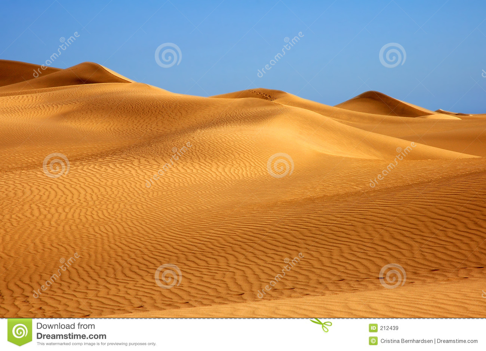 ¿Perdido en el desierto?