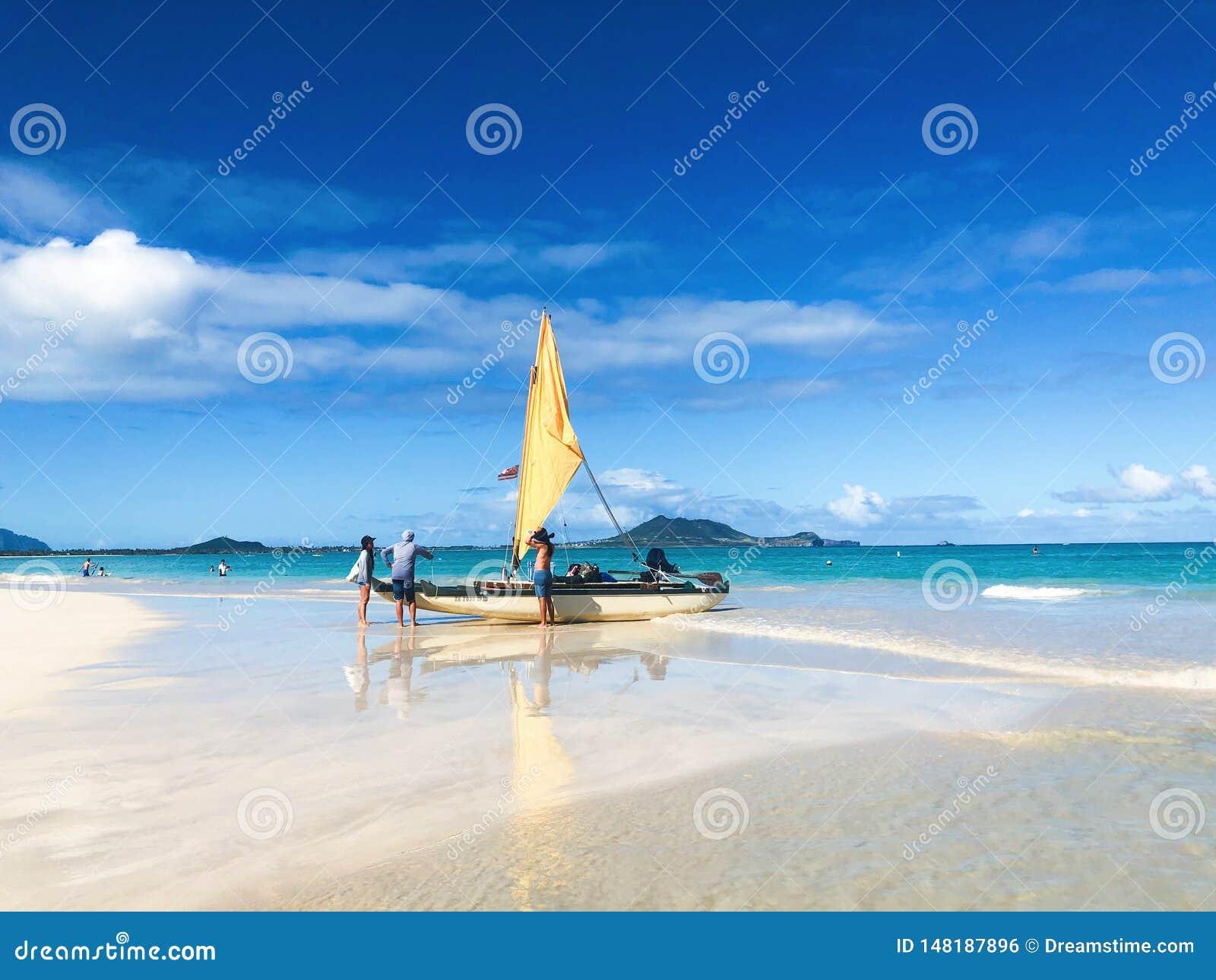¿Quiera ir a navegar en el océano?