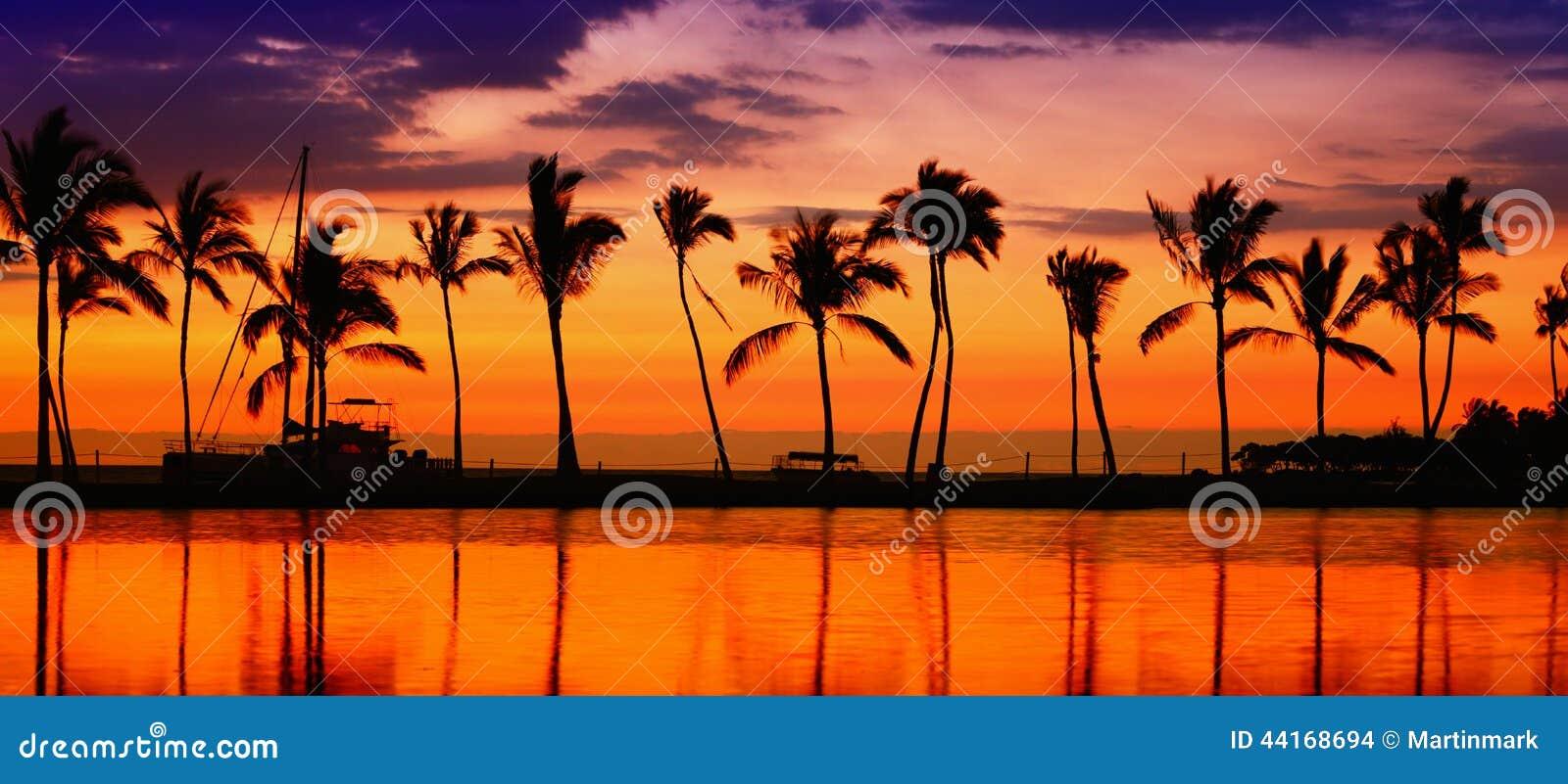 旅行横幅-使天堂日落棕榈树靠岸