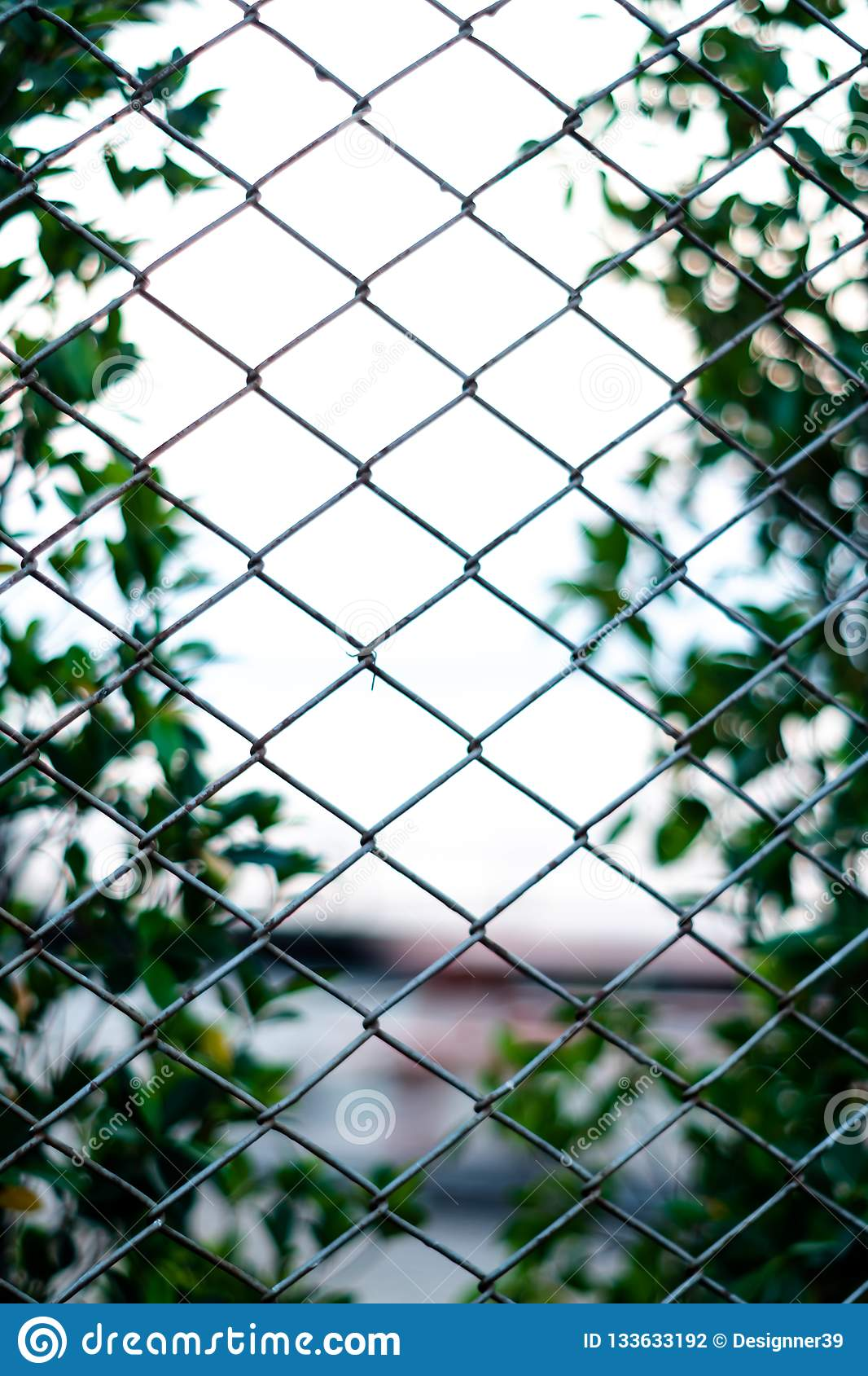 Net and garden background blur and.