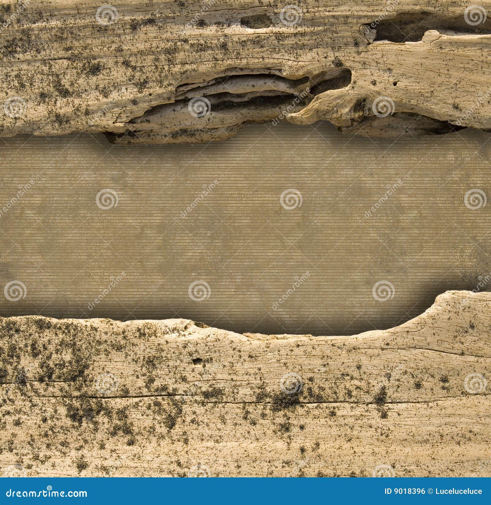 à nervures normal de bois de flottage de diviseur de fond