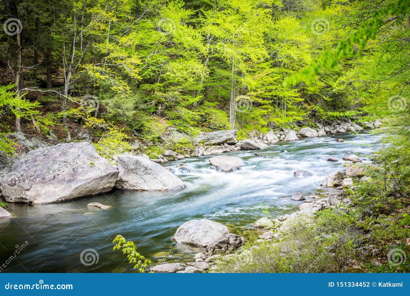 Água que flui abaixo de um córrego perto de Hamilton Falls, Vermont, EUA