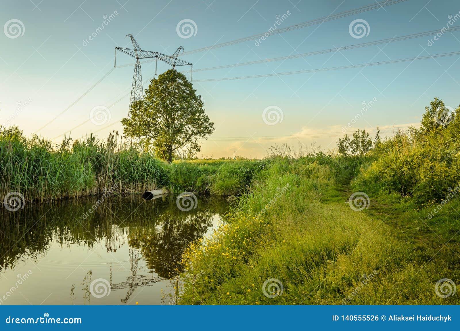 Água que jorra do esgoto ao rio/conceito da ecologia: o esgoto derrama desperdiça para fora ao rio