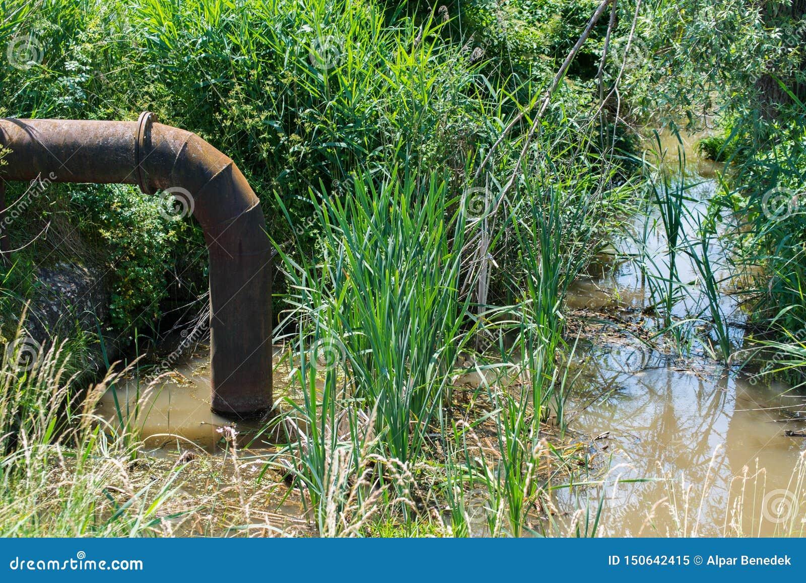 Águas residuais que poluem a tubulação oxidada do ferro da calha pequena da lagoa