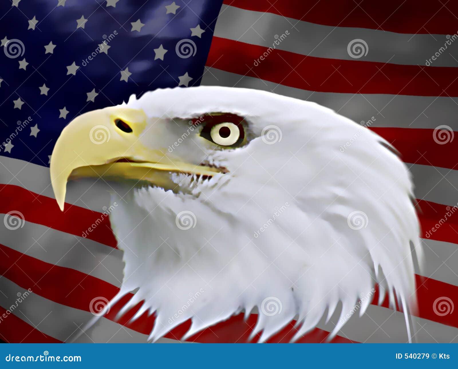 Águia americana (bandeira)