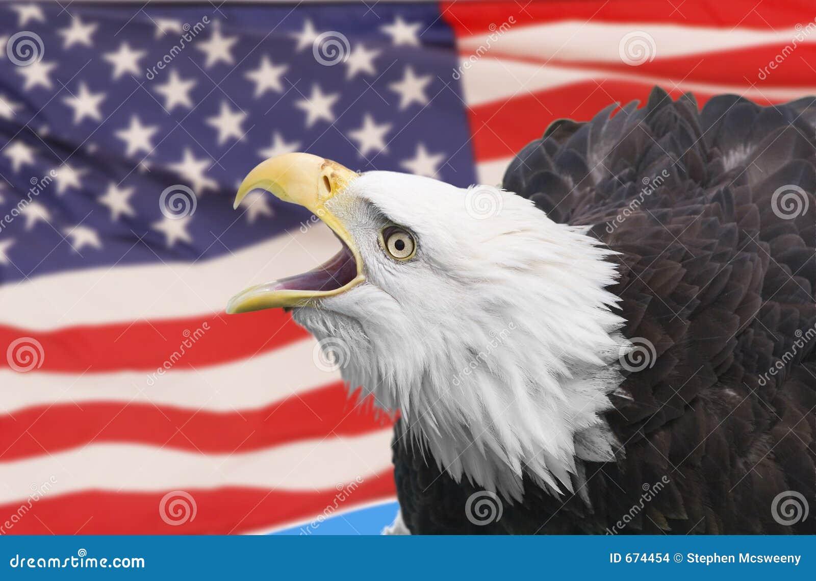 Águia com bandeira