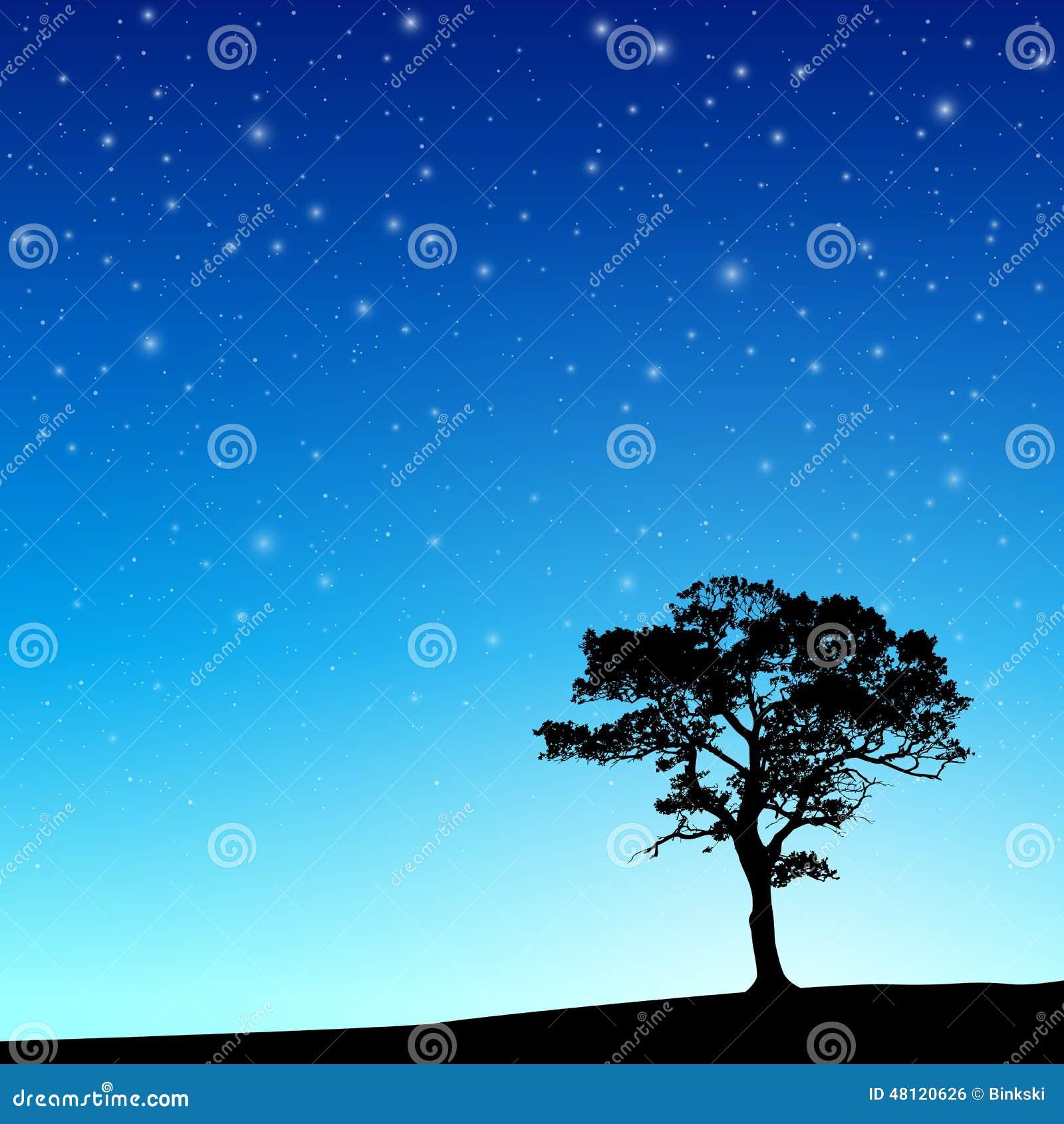 Árbol con el cielo nocturno