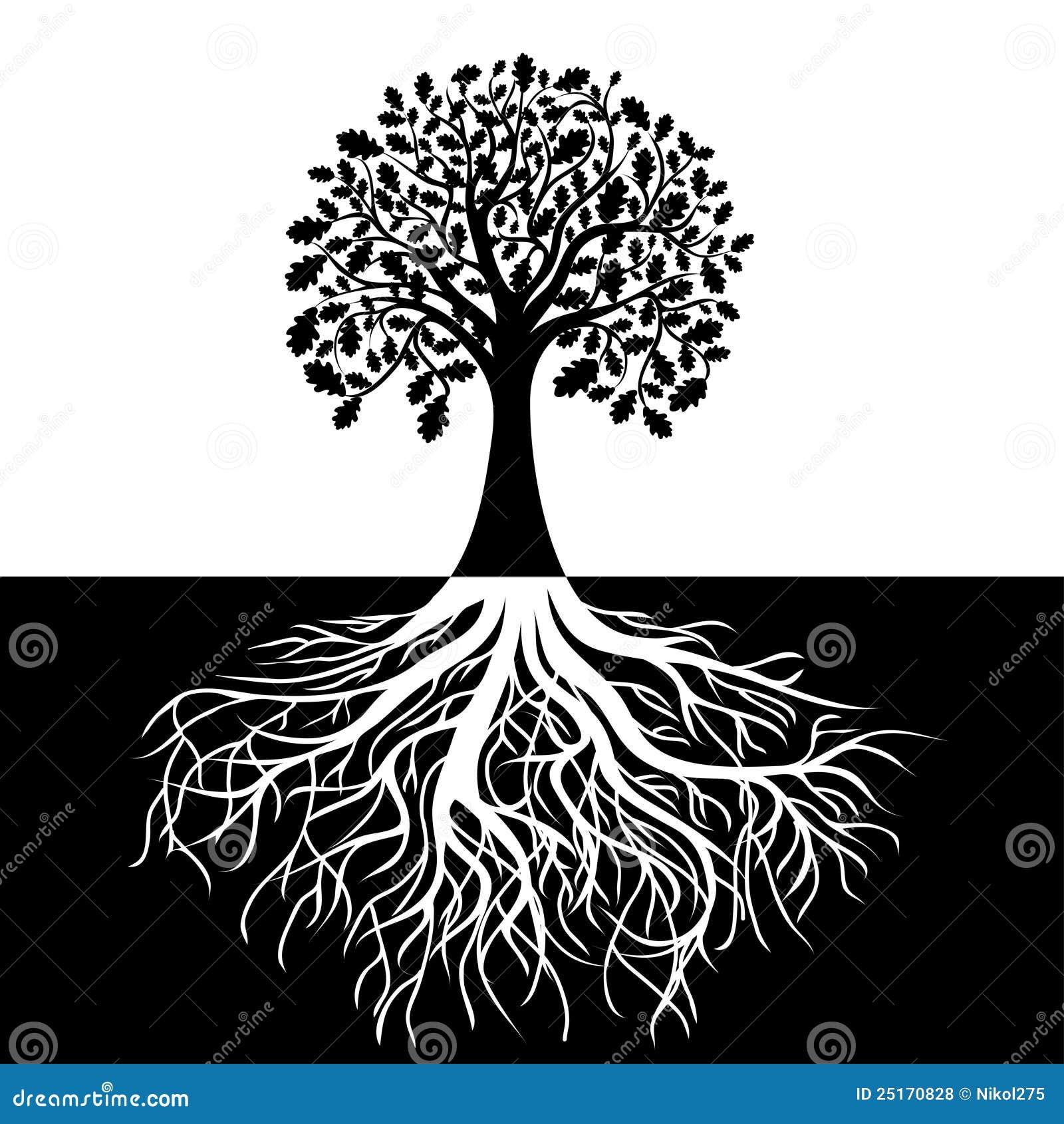 árbol Con Las Raíces En Fondo Blanco Y Negro Ilustración Del Vector