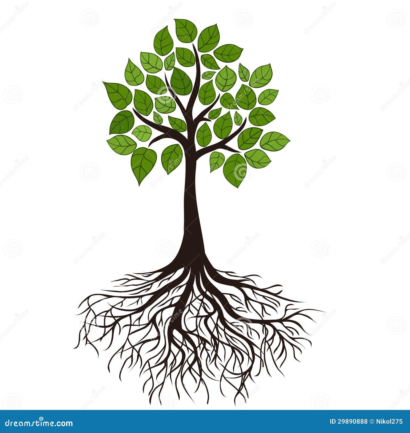 Árbol con las raíces ilustración del vector ilustración de