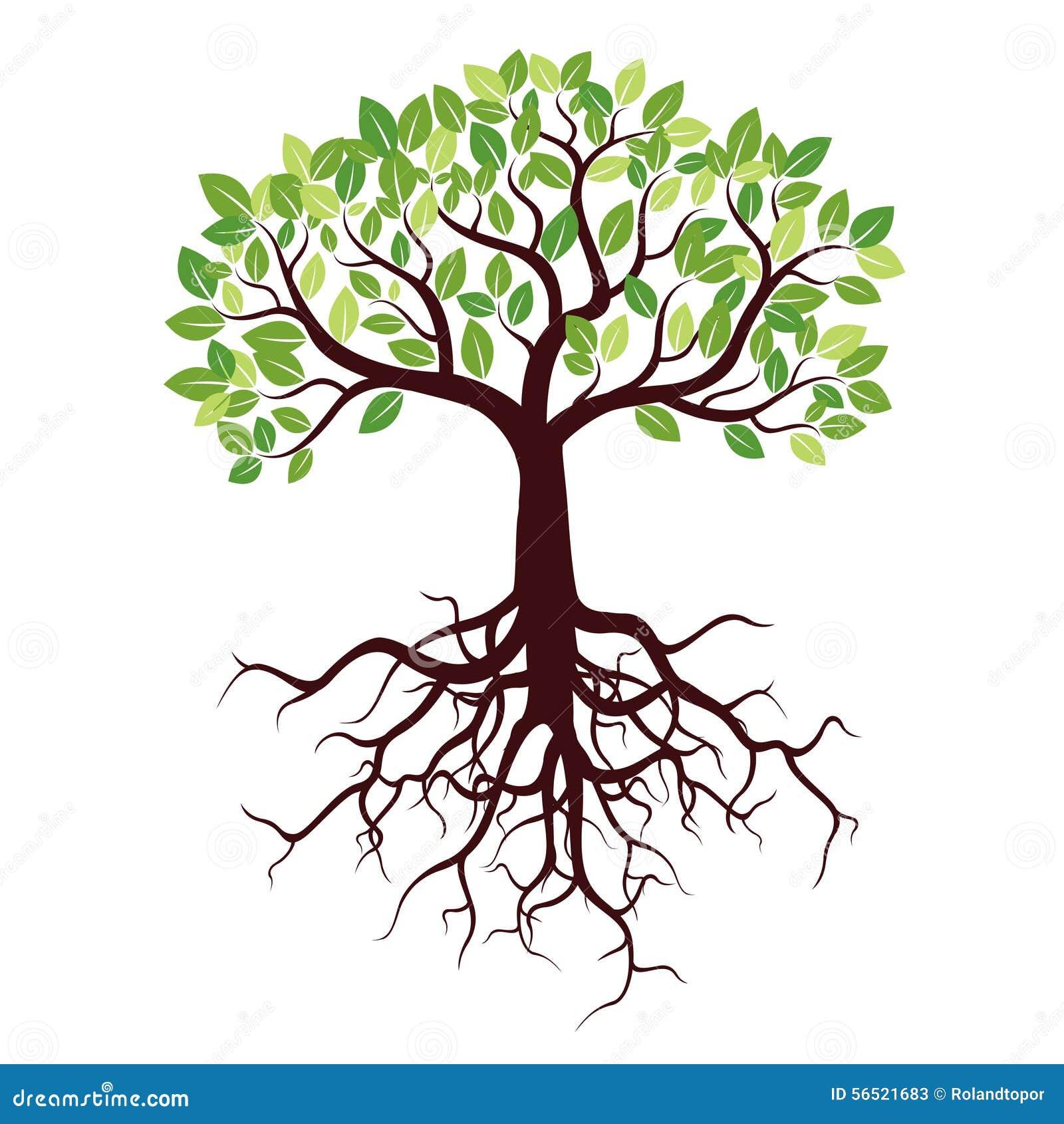 Árbol con las raíces y las hojas