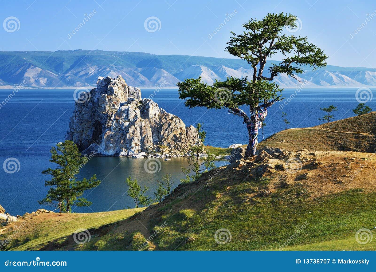 Árbol de deseos en el lago Baikal