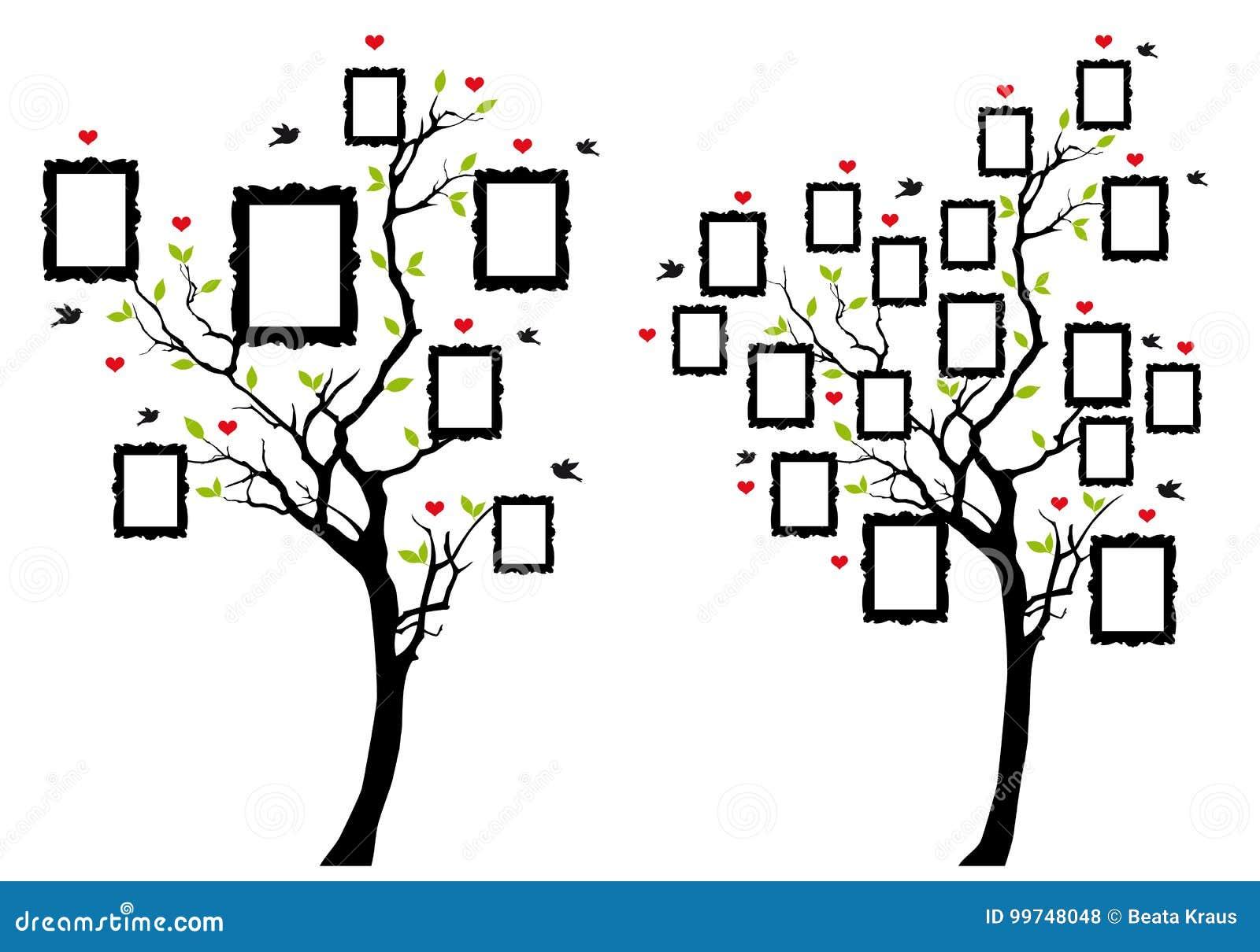 Árbol De Familia Con Los Marcos De La Foto, Vector Ilustración del ...