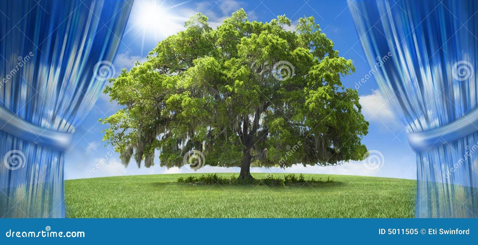 Árbol de roble