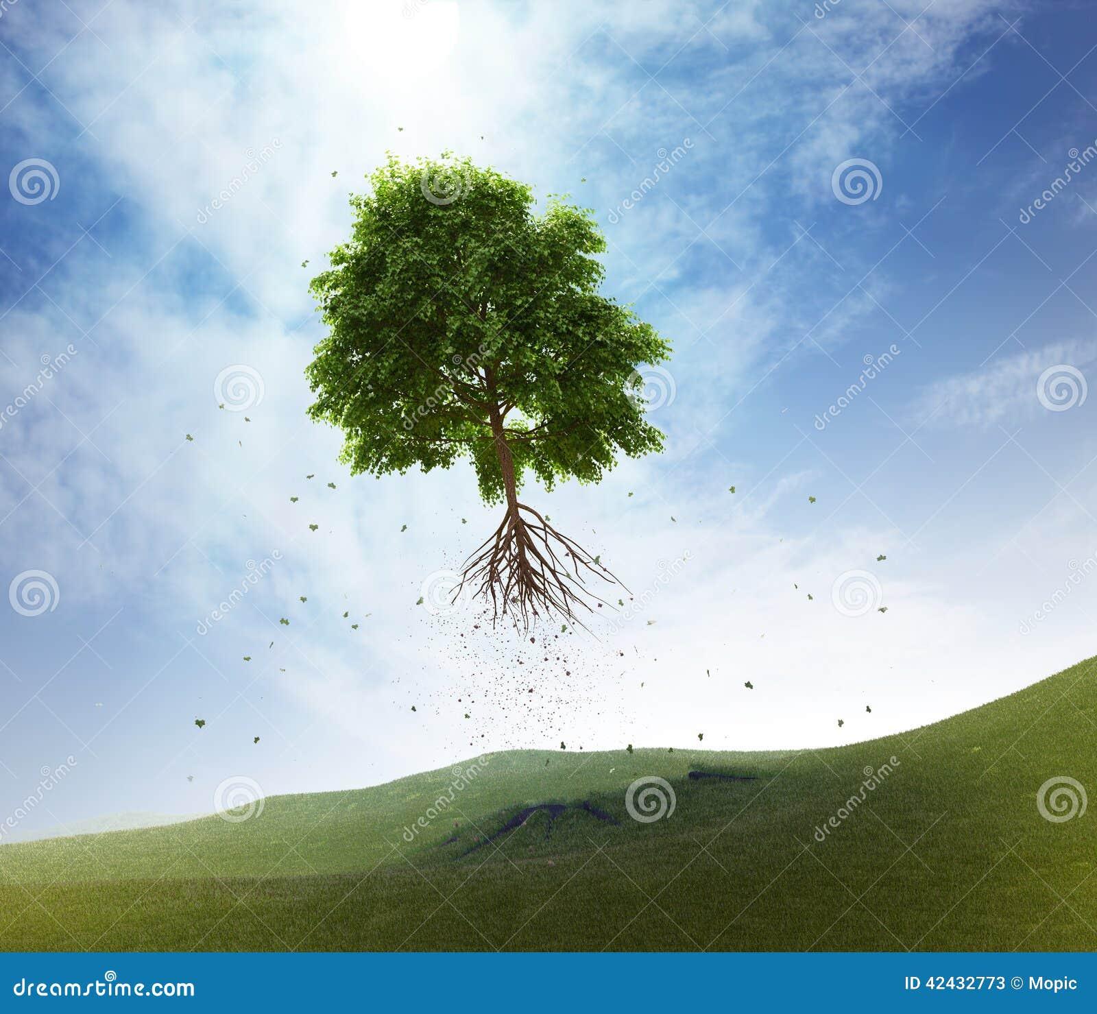 Árbol del vuelo