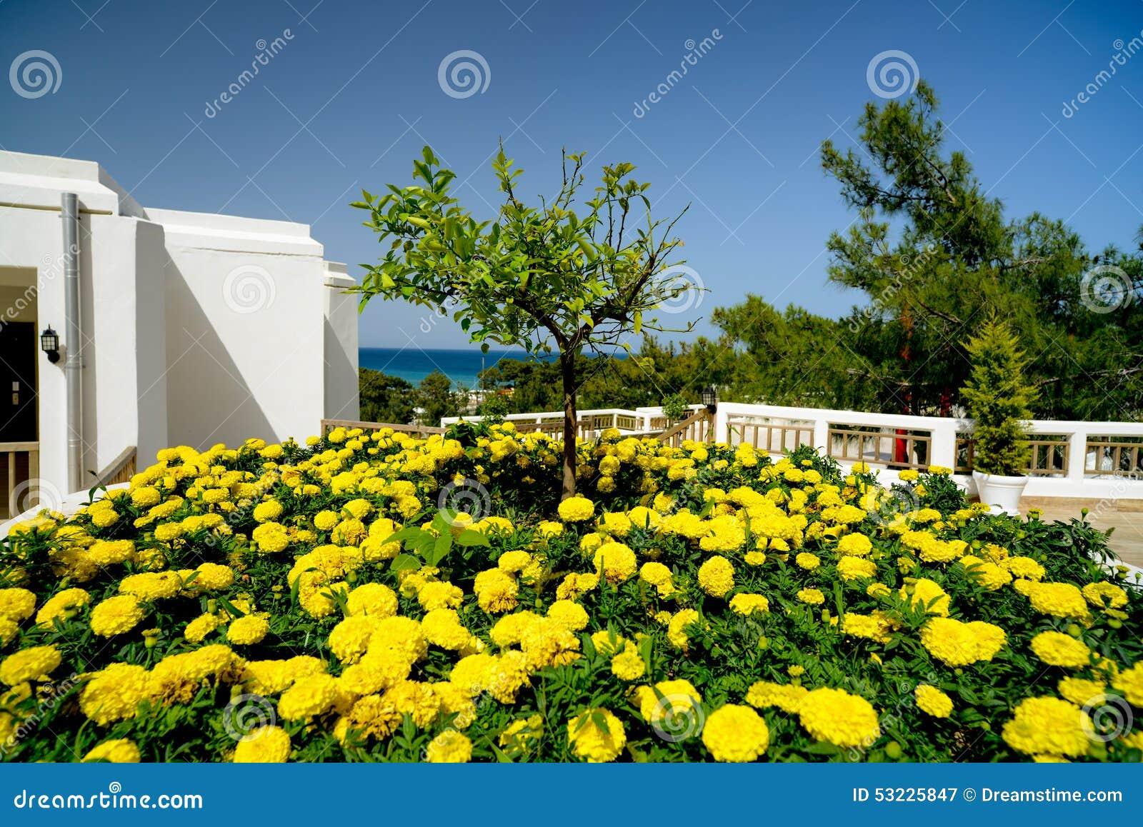 Árbol entre las flores