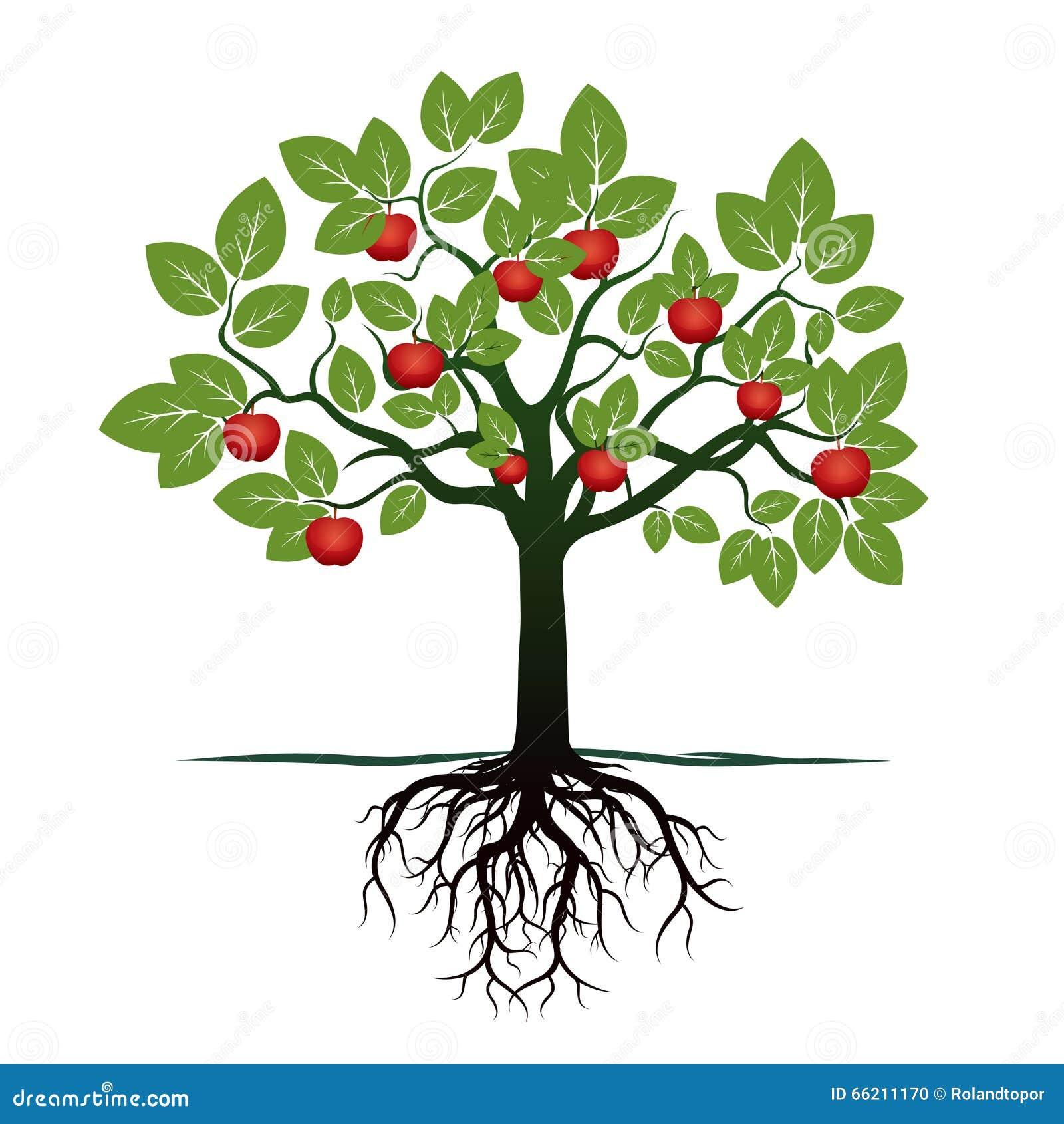 Contemporáneo Página Para Colorear De árbol De Manzana ...