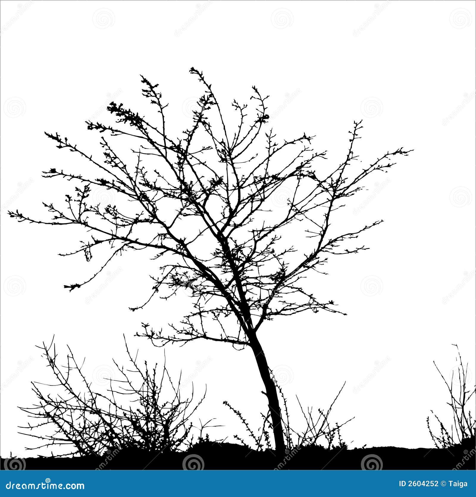 Árbol/silueta 1 del vector