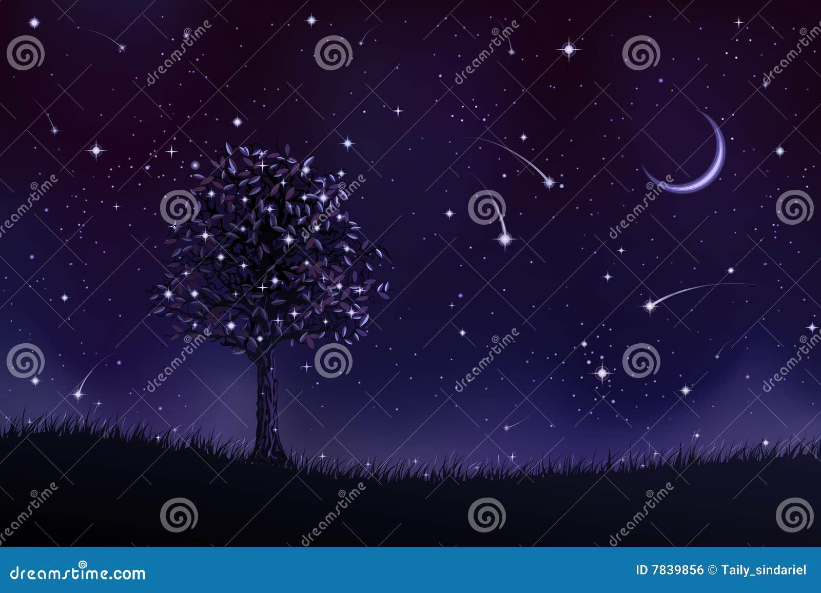 Árbol solitario en la noche