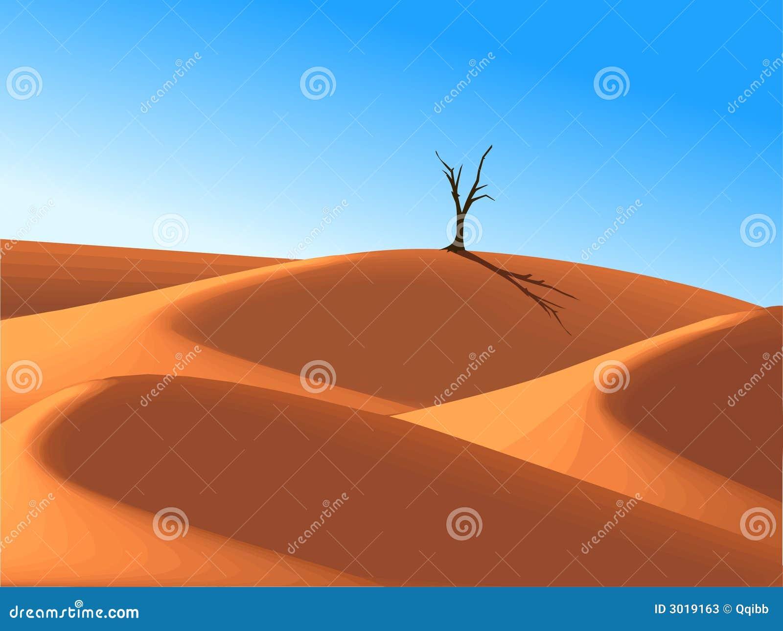 Árbol solo en duna del desierto
