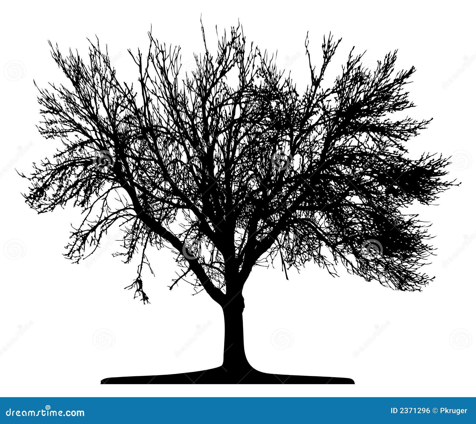Árbol (vector)