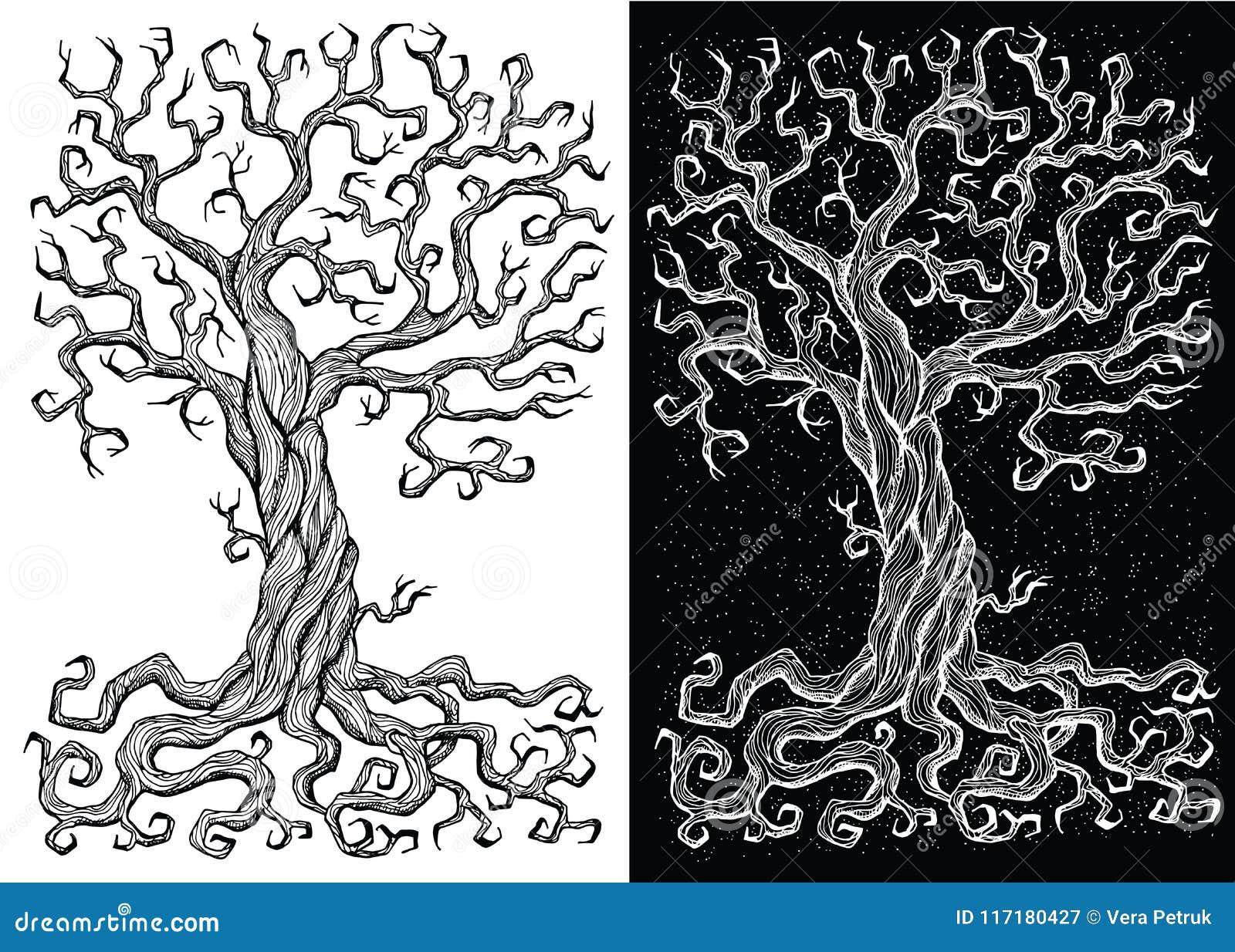 árbol Viejo Sin Las Hojas En Los Fondos Blancos Y Negros Ilustración