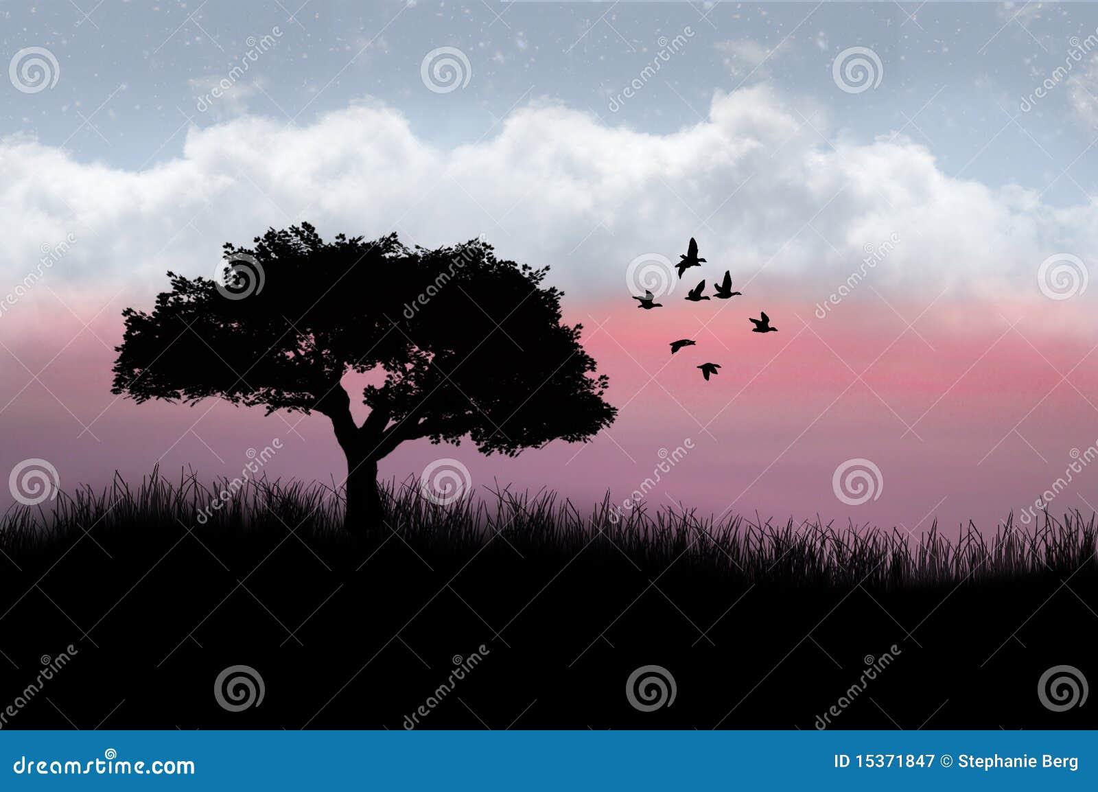 Árbol y pájaros silueteados