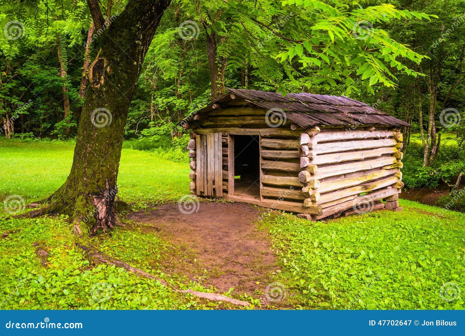 Rbol y peque a caba a de madera en la ensenada cade - Cabanas de madera en arboles ...