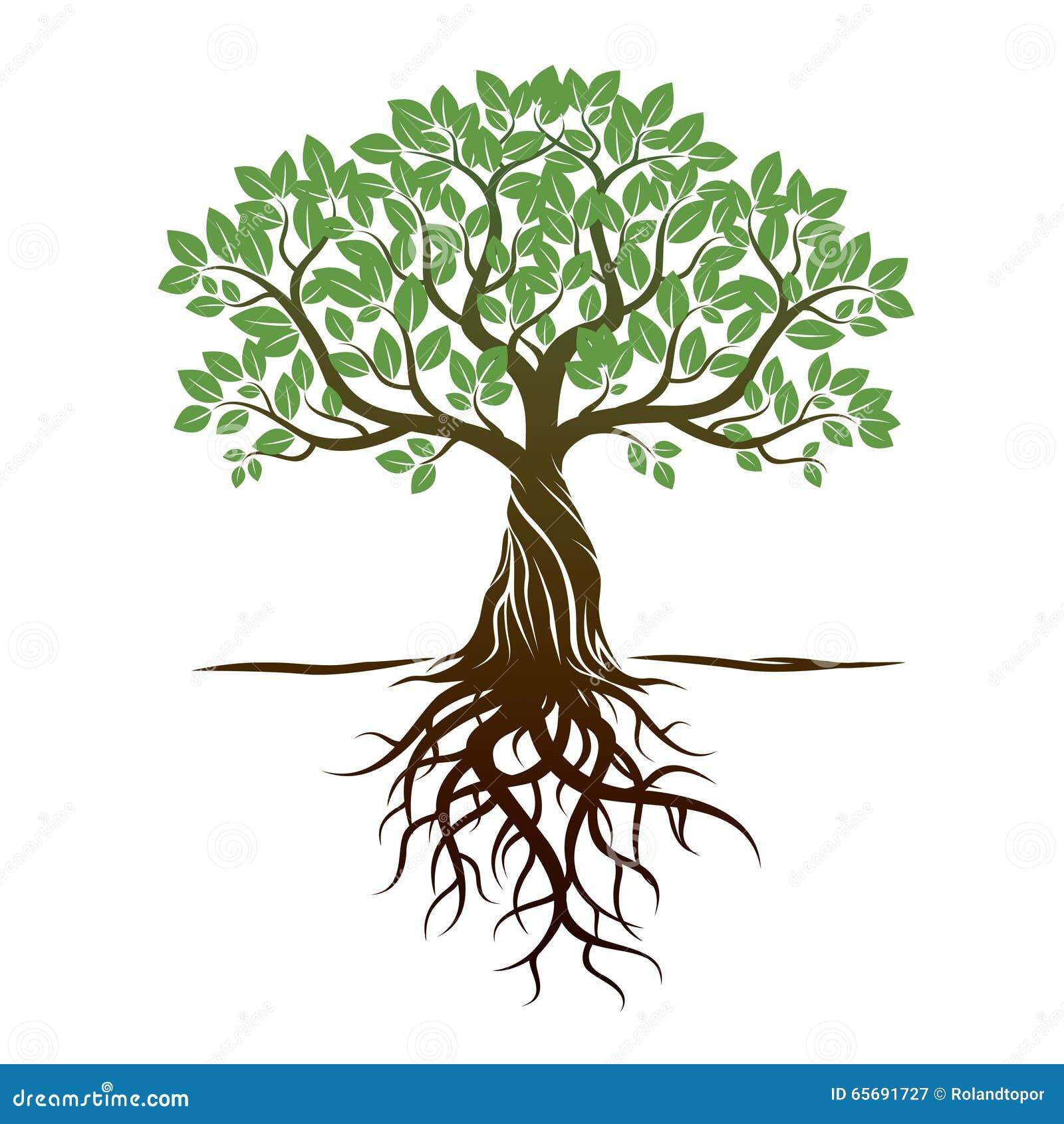 Árbol y raíces del color Ilustración del vector