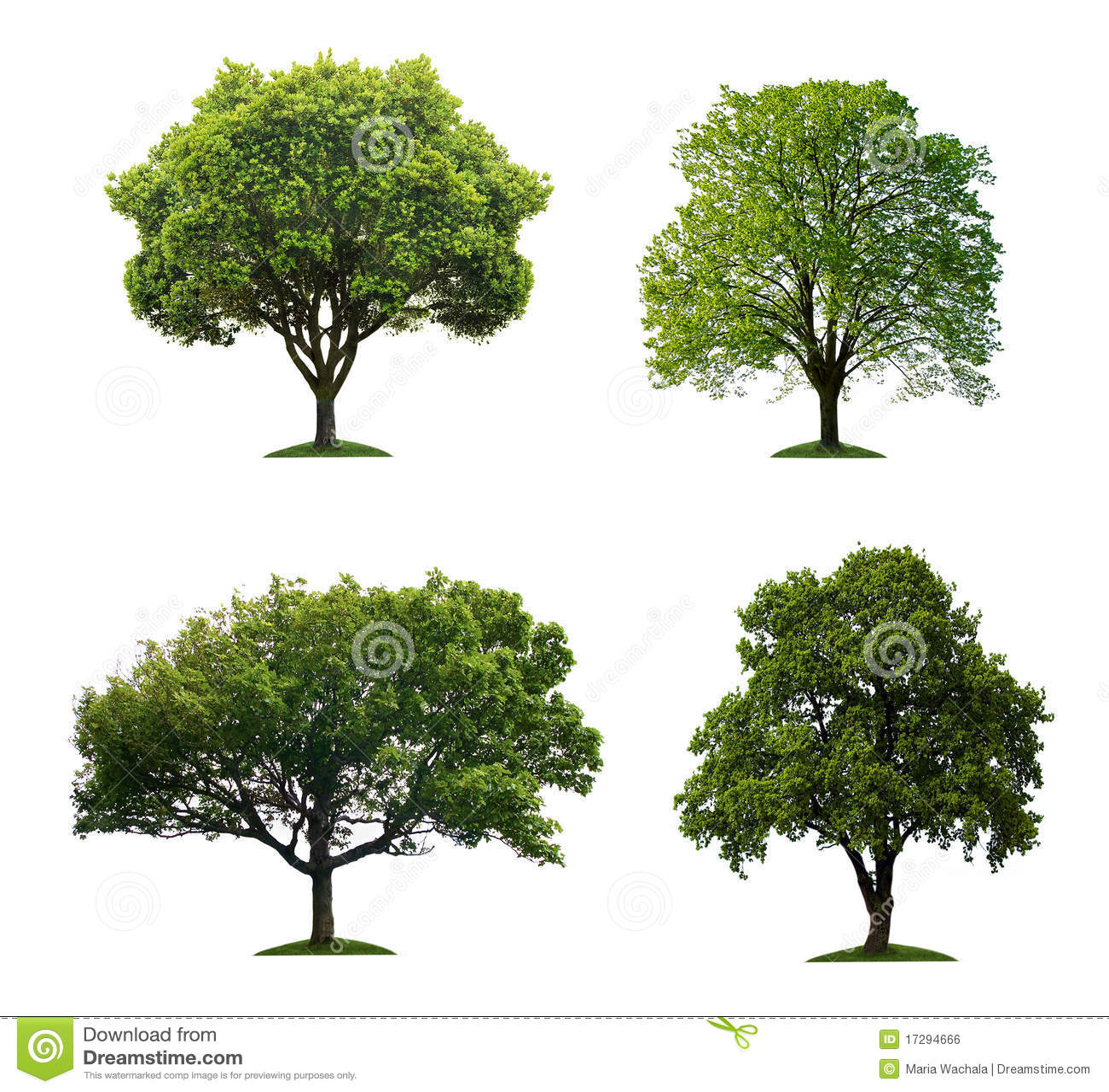 Árboles aislados