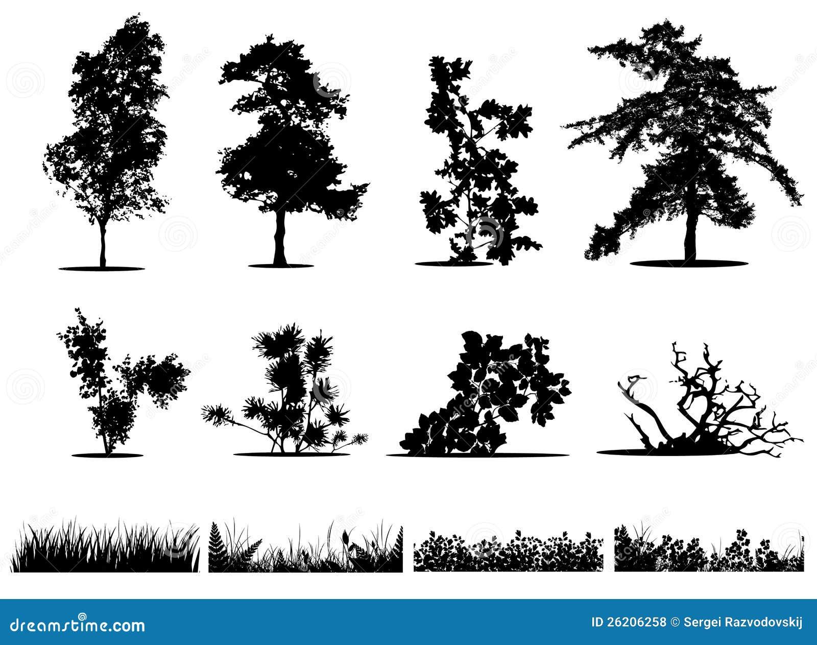Rboles arbustos y siluetas de la hierba fotos de archivo - Arboles y arbustos ...