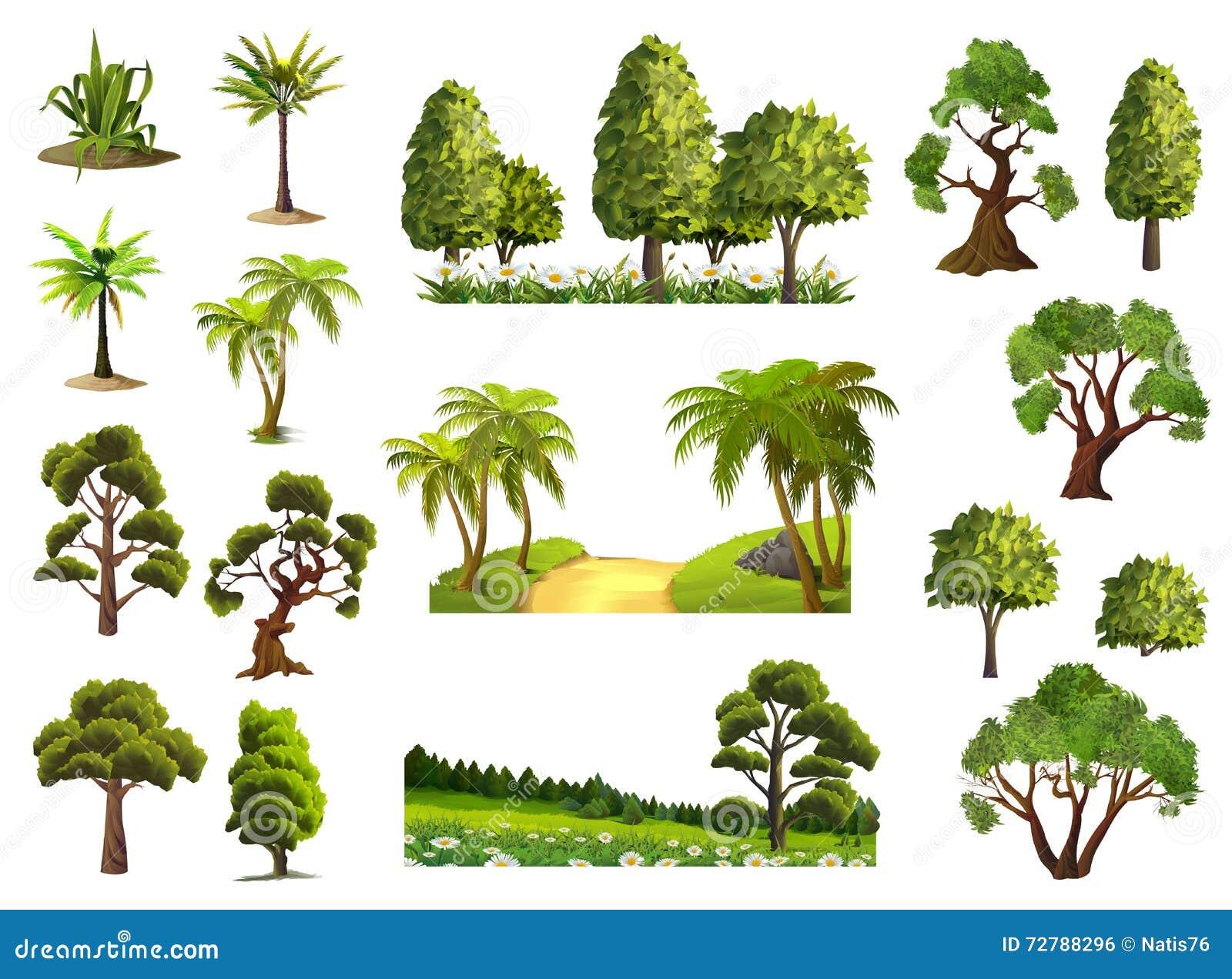 Árboles, bosque de la naturaleza