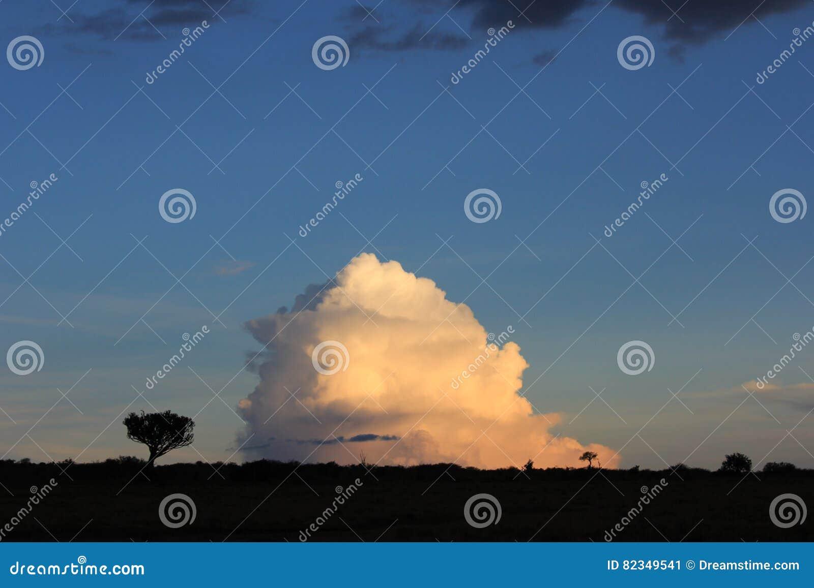 Árboles contra las nubes 2