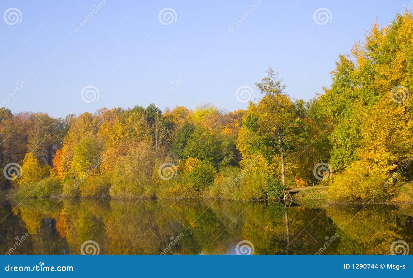 Árboles del otoño