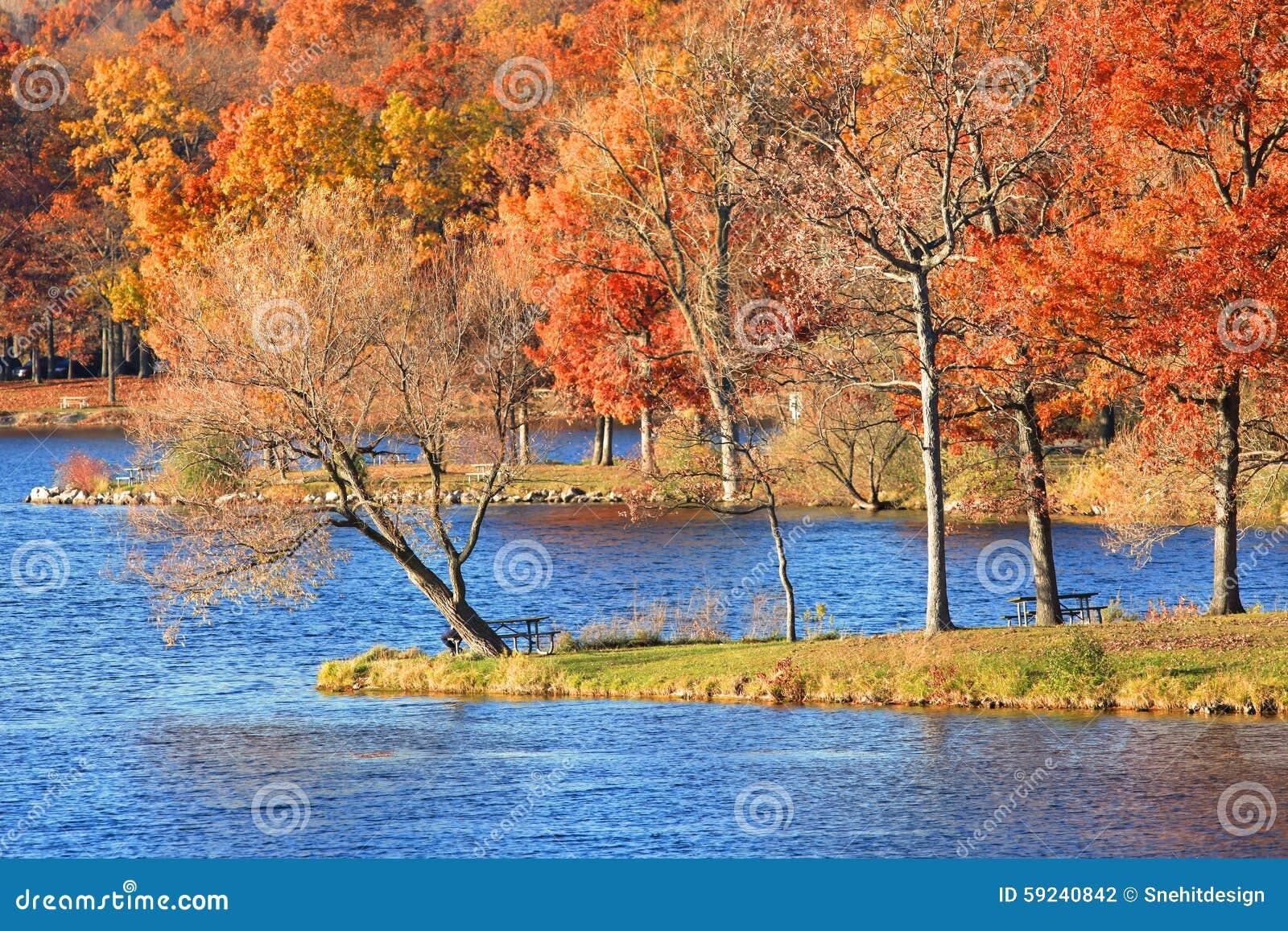Download Árboles Del Otoño Por El Lago Foto de archivo - Imagen de paisaje, north: 59240842